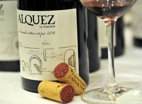 Spanish Wines in Our Glass