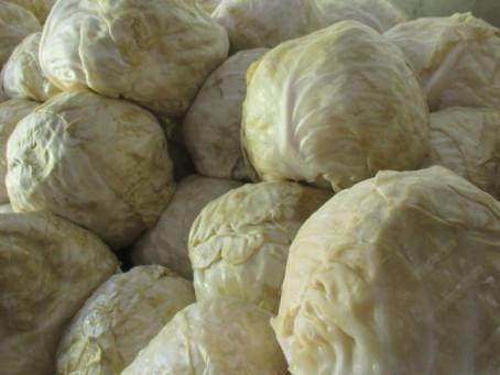 Ogulin Sauerkraut - Top Gastronomy Brand of Ogulin