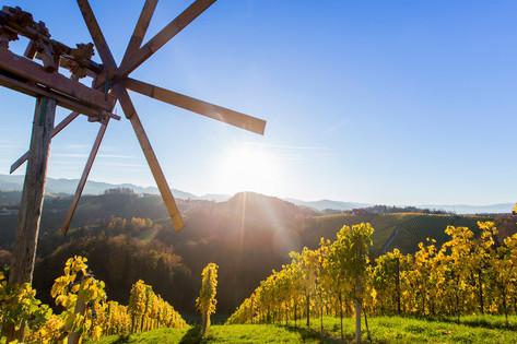 Steiermark - The splendid gastronomy of Styria