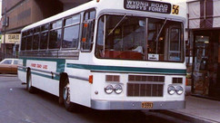 FOREST LEYLAND PANTHER - 5993