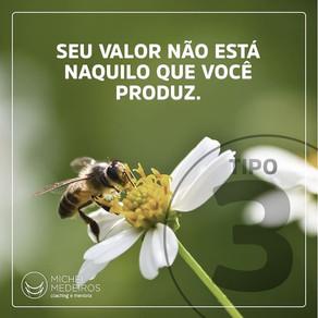 3 - O REALIZADOR