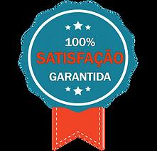 SELO DE GARANTIA.png