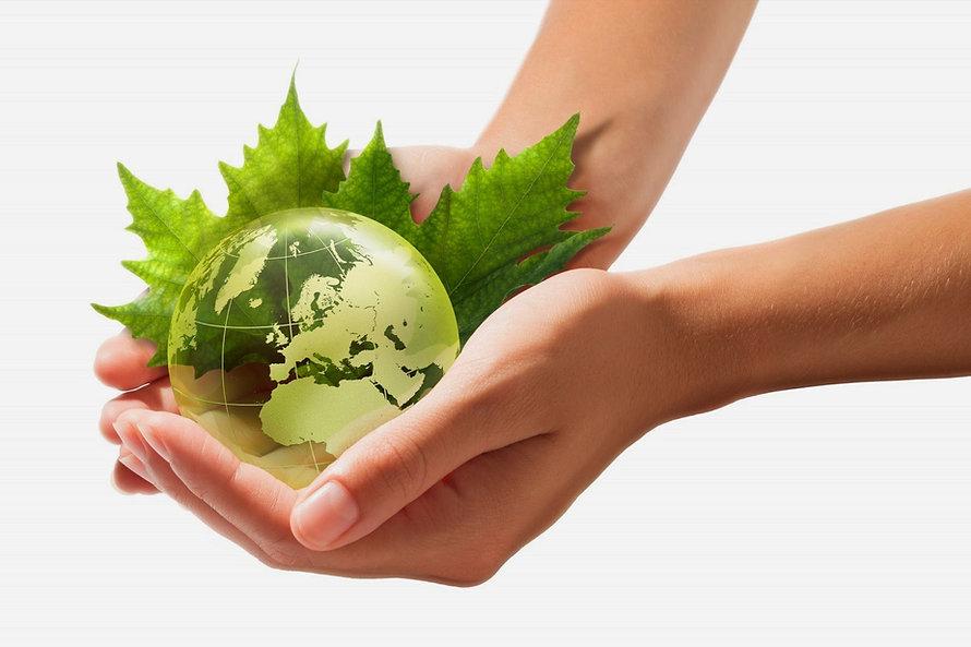 Green-Earth-on-hands.jpg