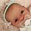 Thumbnail: Newly Born
