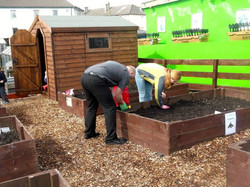 Gardening at the allotment