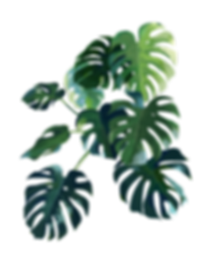 plantas corporativas