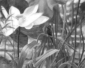 Alison Worsnop - Finch & Flowers monochr