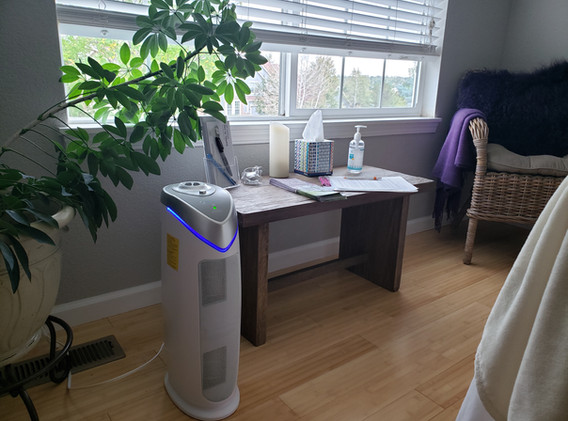 Air purifier with ultra violet lamp