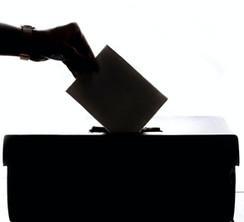Online Wahlen 1.jpg