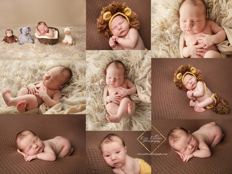 Newborn Photographer in Kansas City- Meet Chipper