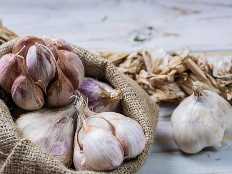 The Benefits of Garlic | Yoga of Eating