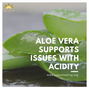 Aloe Vera Suppots Issues with Acidity | Yoga of Eating