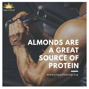 Almonds are A Great Source of Protein | Yoga of Eating