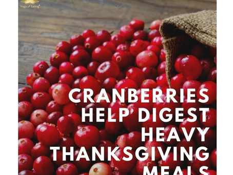 Cranberries Help Digest Heavy Thanksgiving Meals | Yoga of Eating