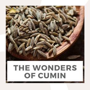 The Wonders of Cumin | Yoga of Eating