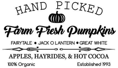 Farm Fresh Pumpkins.JPG