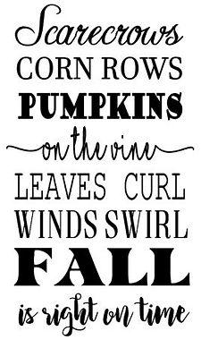 Scarecrows corn rows.JPG