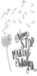Never stop . . . wishes.PNG