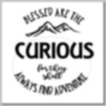 curious 1.JPG
