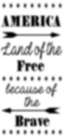 America - Land of the free.JPG