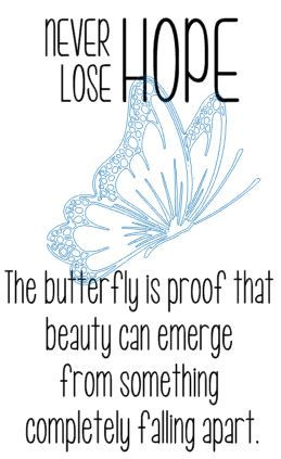 Never lose Hope - butterfly.JPG
