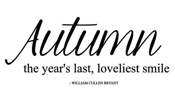 Autumn the year's.JPG