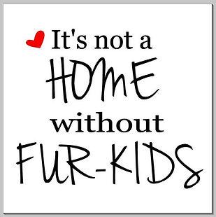 It's not a home . . ..JPG