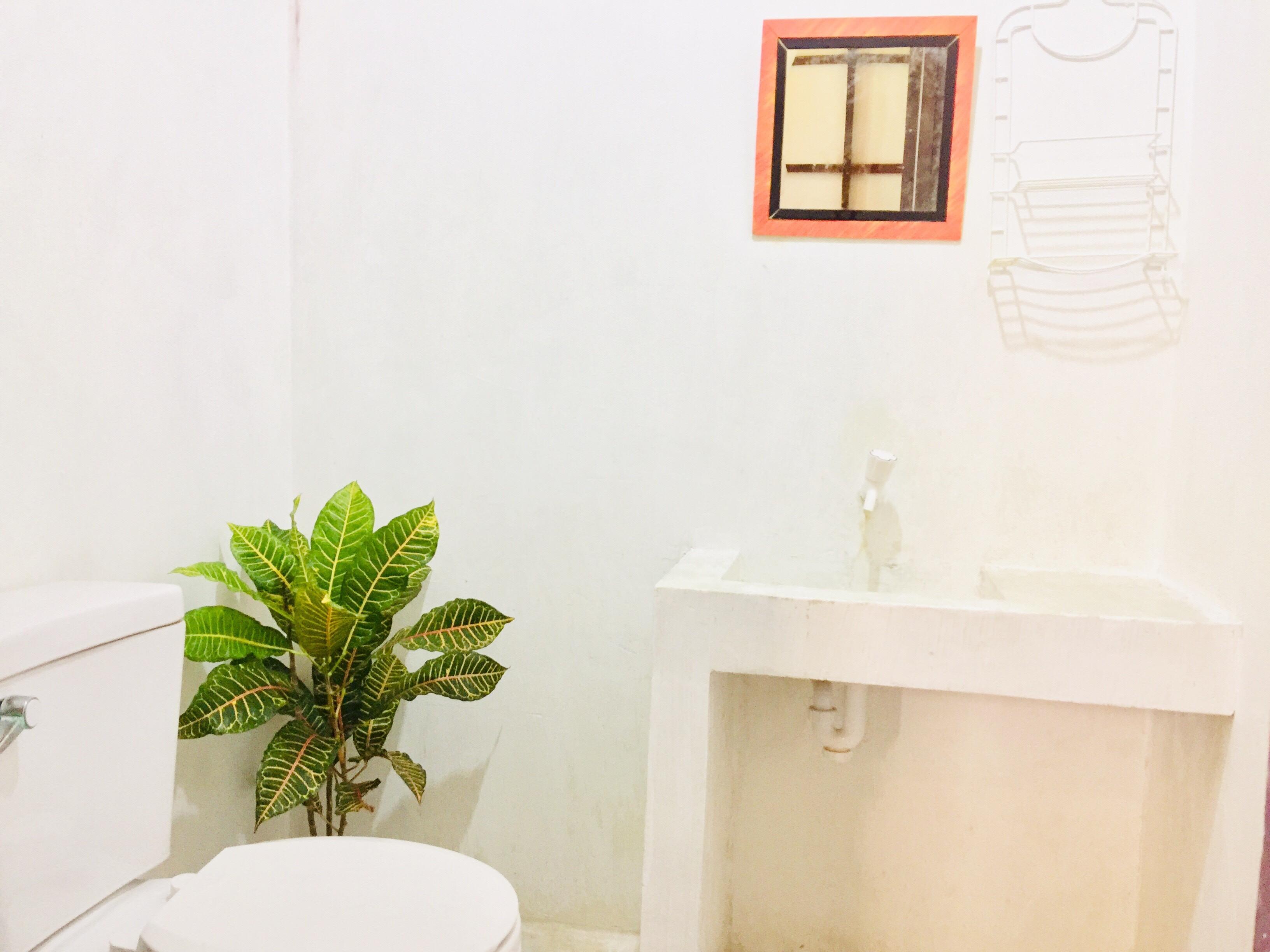 Garden bath.jpg