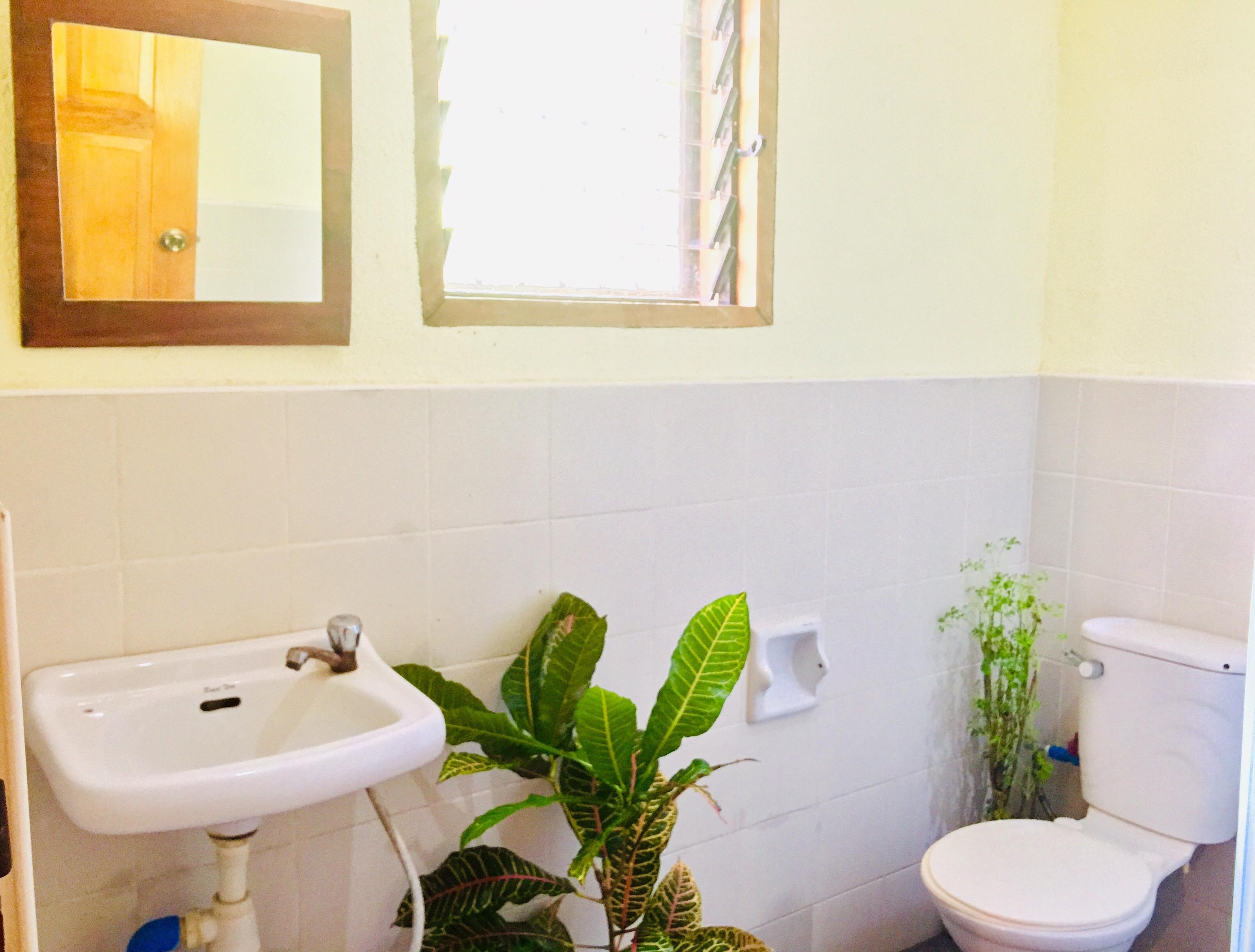 Jungle WC.jpg