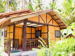 Jungle House.jpg