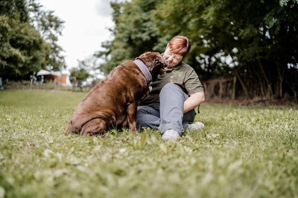 Hundeschule (9 von 15).jpg