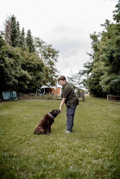 Hundeschule (1 von 15).jpg