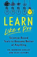 Cover of Learn Like a Pro.jpg