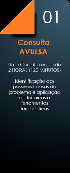 Consulta_Avulsa.png