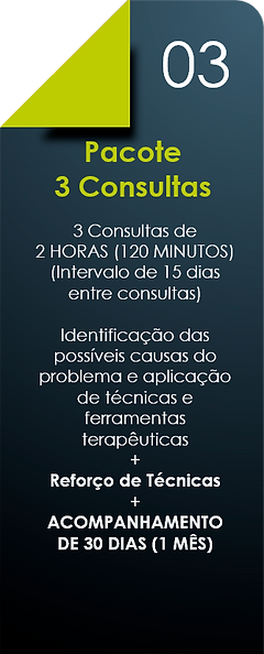 Pacote_3_Consultas.png