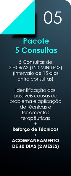 Pacote_5_Consultas.png