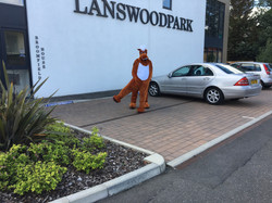 Lucky Lanswood
