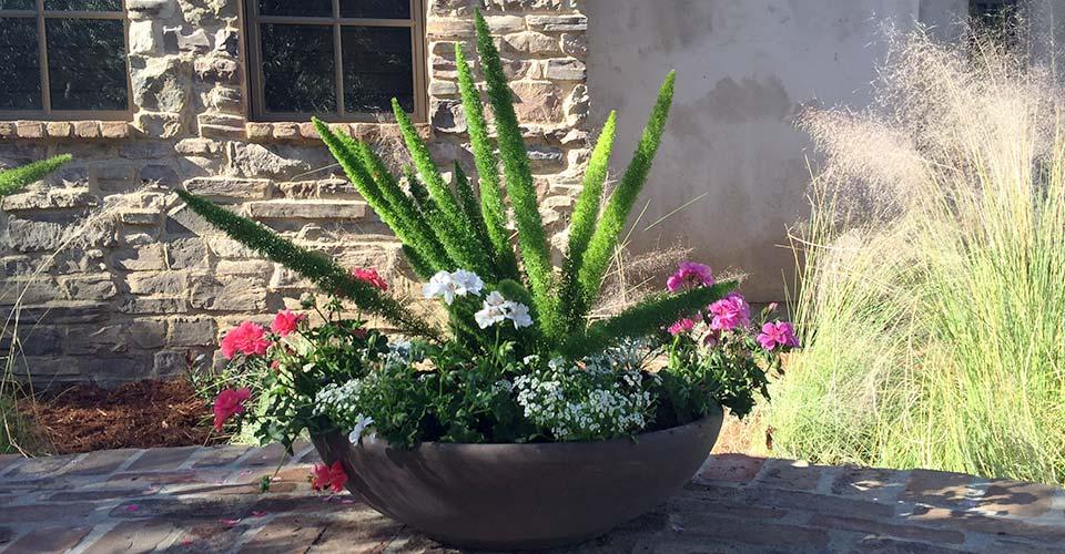 ology-design-exterior-plantscape