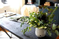 Beautiful Houseplant