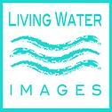 Living Waer Images.png