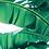 Thumbnail: Rajskie liście