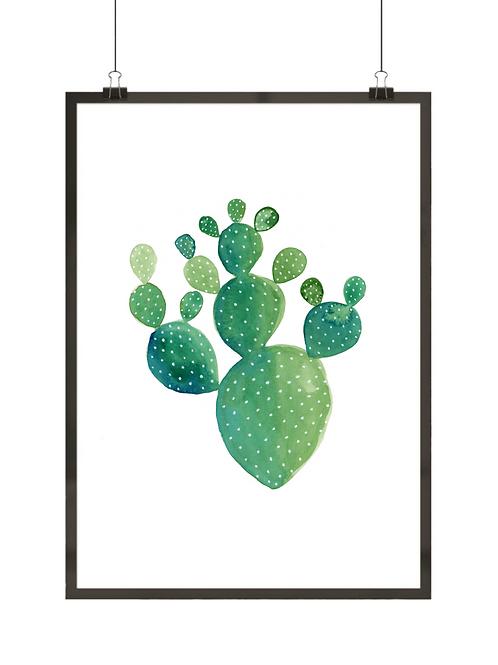 Prosty kaktus