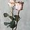 Thumbnail: Bukiet róż