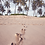 Thumbnail: Plaża i palmy