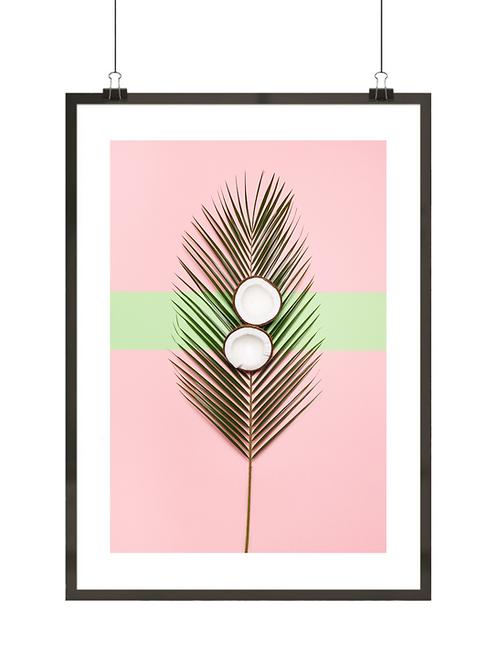 Palma i kokos