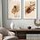 Thumbnail: Protea królewska