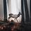 Thumbnail: Jeleń w lesie