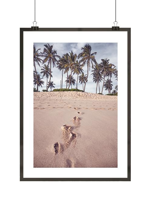 Plaża i palmy
