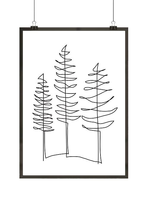 Linie drzew
