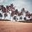 Thumbnail: Ślady na piasku